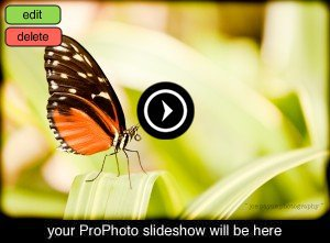 slideshow-placeholder-1001692136