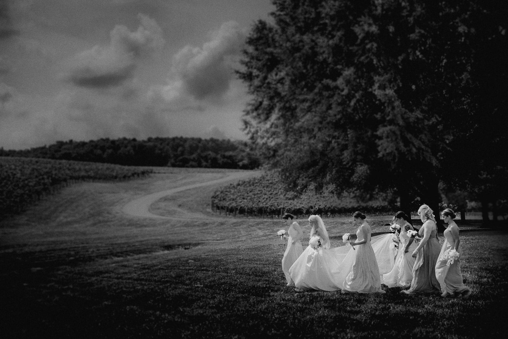 Charlottesville Wedding Photography - Trump Winery Bride & Bridesmaids