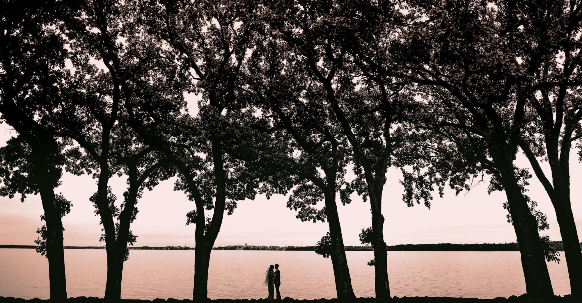 Madison-Wedding-Photographer-Abby-Chad-Lakeside-Silhouette-Under-Trees-Warm-1
