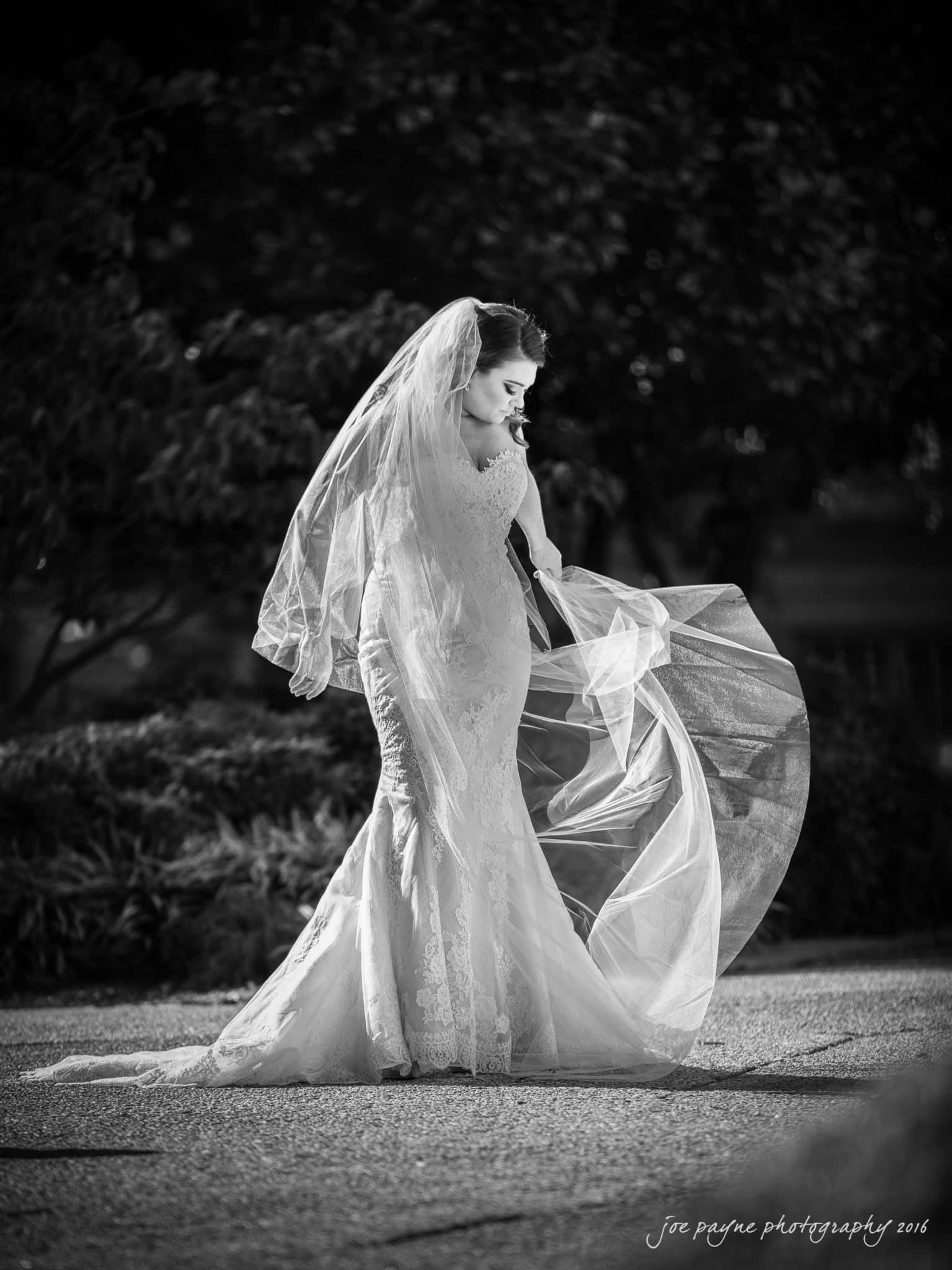 Raleigh Wedding Photographers - NC Capitol Bridal Photo