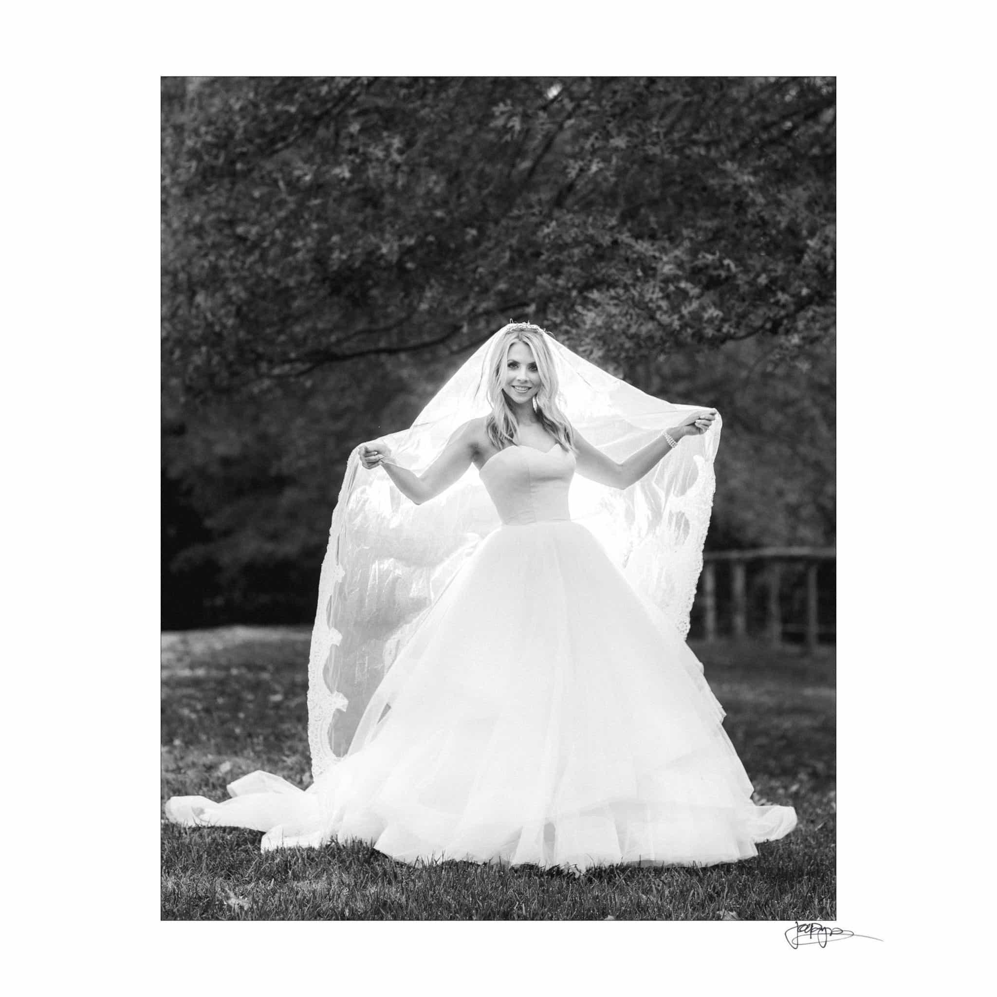 Umstead Hotel Wedding Bridal Veil
