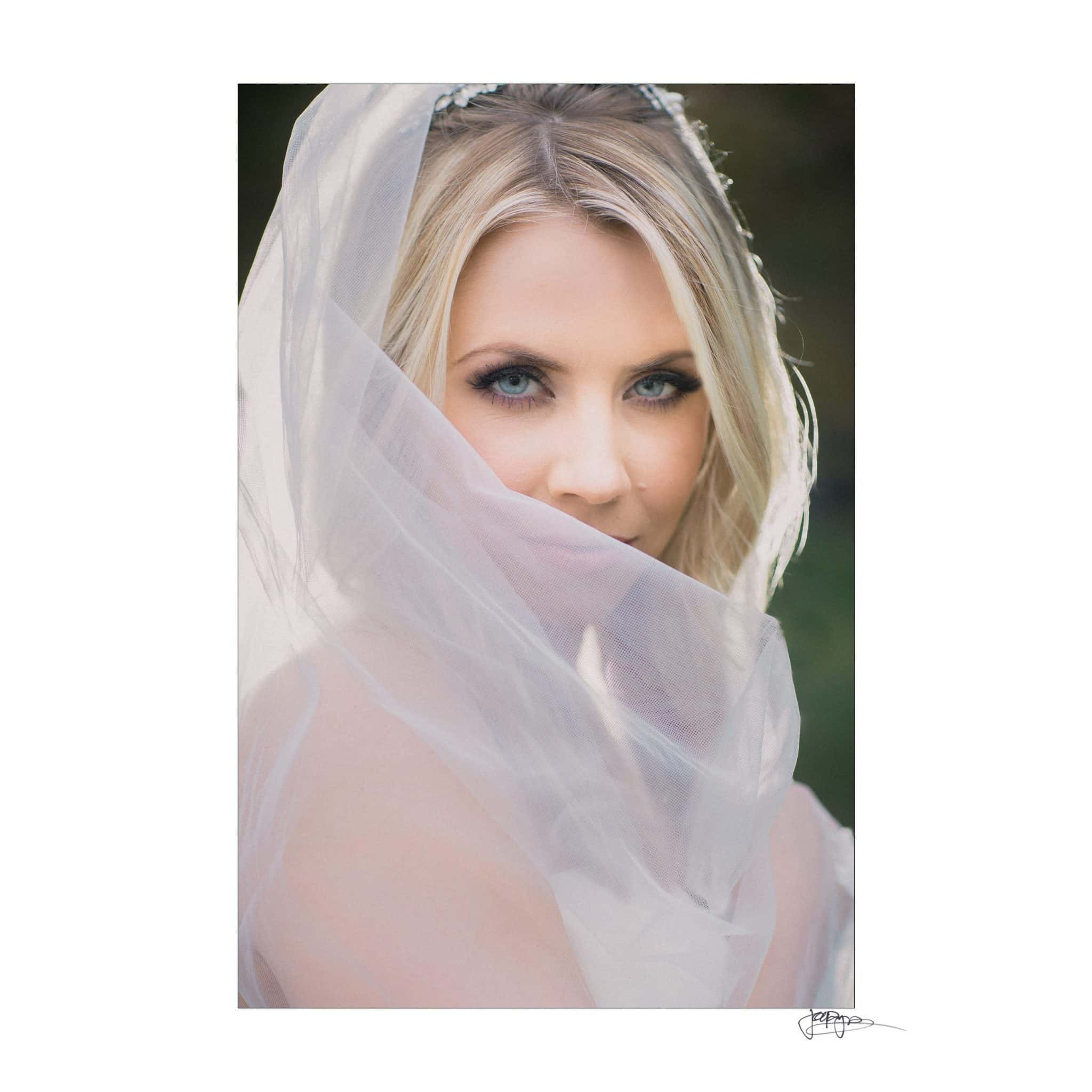 Umstead Hotel Wedding Eyes Through Veil Bridal Shot