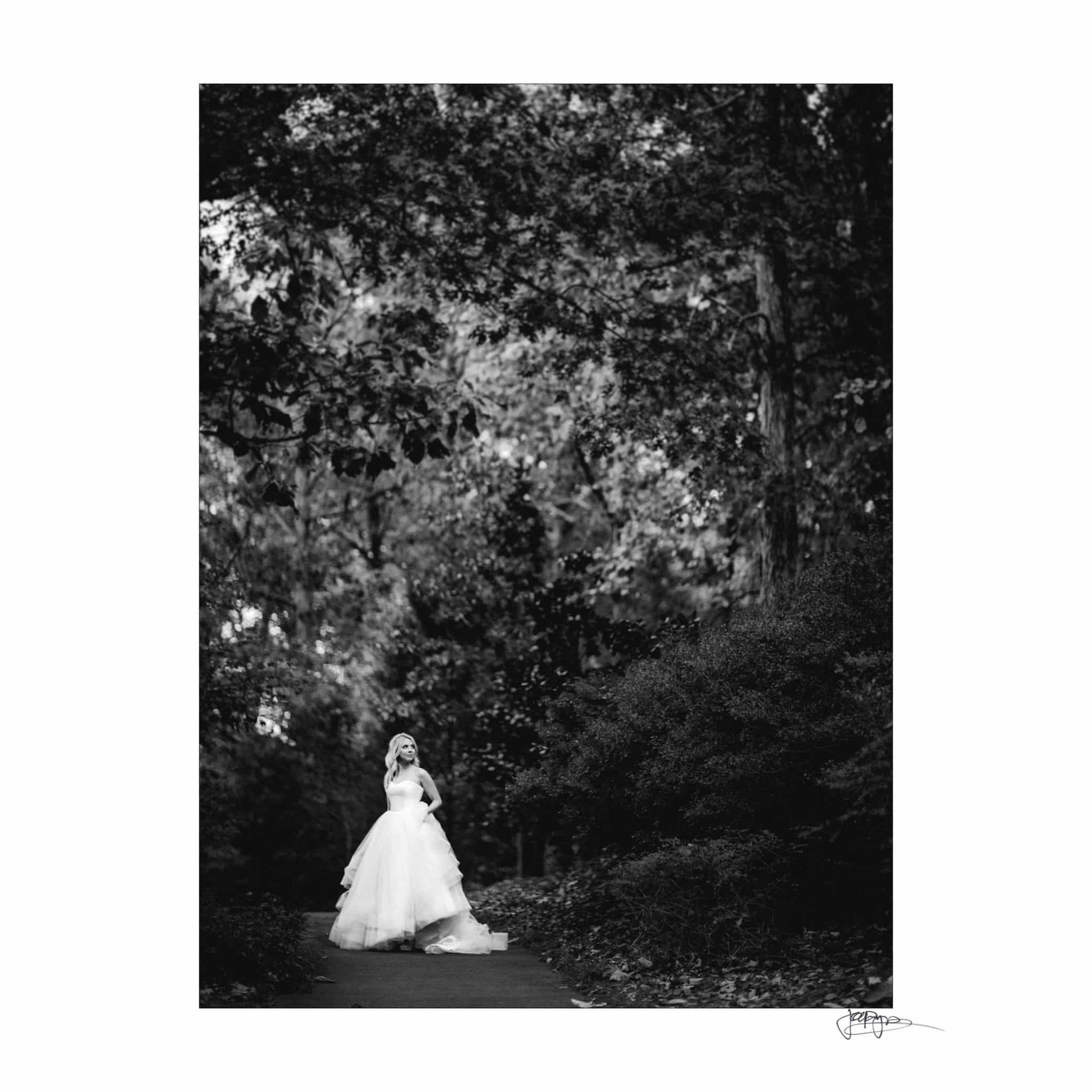 Umstead Hotel Wedding Bride in Woods