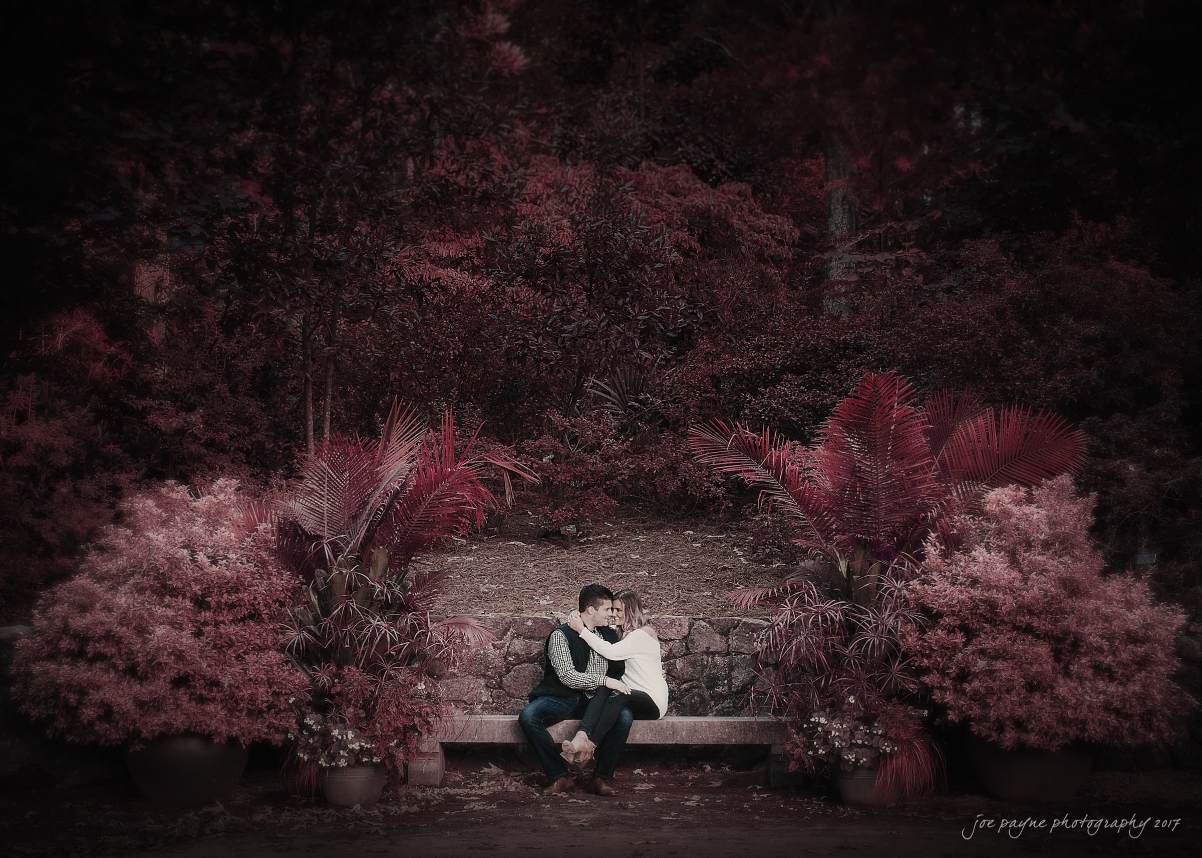 duke gardens engagement session infrared film