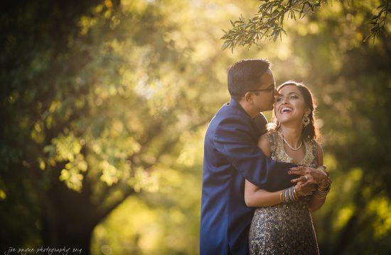 renaissance raleigh Indian wedding photographer – swathi & karthik